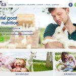 Kabrita Goat Milk Formula Website Design